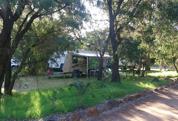 shady-caravan-site