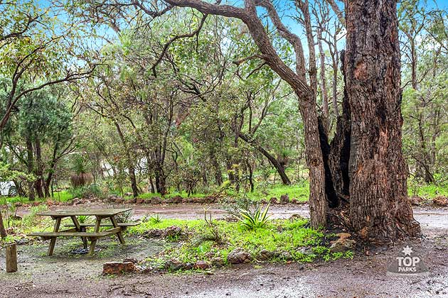 Shady natural bush camp sites in Margaret River caravan park
